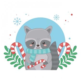 Glückliche karte der frohen weihnachten mit waschbärcharakter