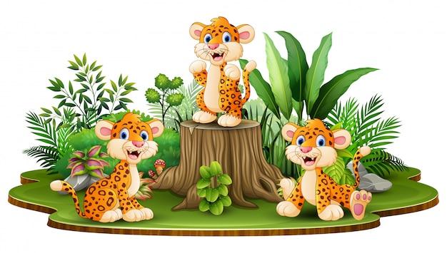 Glückliche leopardgruppe mit grünpflanzen