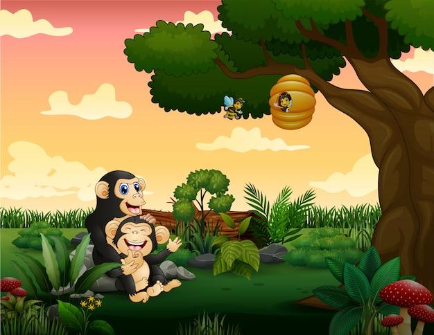Glückliche schimpansenmutter mit ihrem jungen auf dem feld