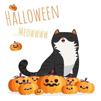 Glückliche schwarze katze halloweens, die auf stapel der kürbise sitzt.