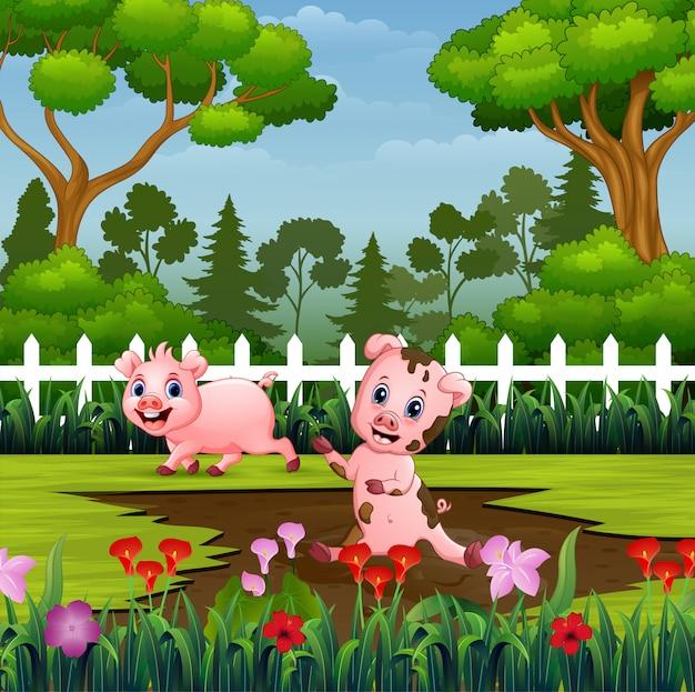 Glückliche schweine, die eine schlammpfütze im park spielen