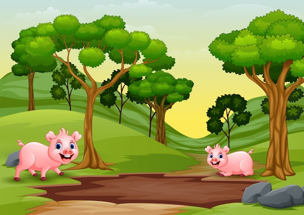 Glückliche schweine sehen eine schlammpfütze und wollen spielen