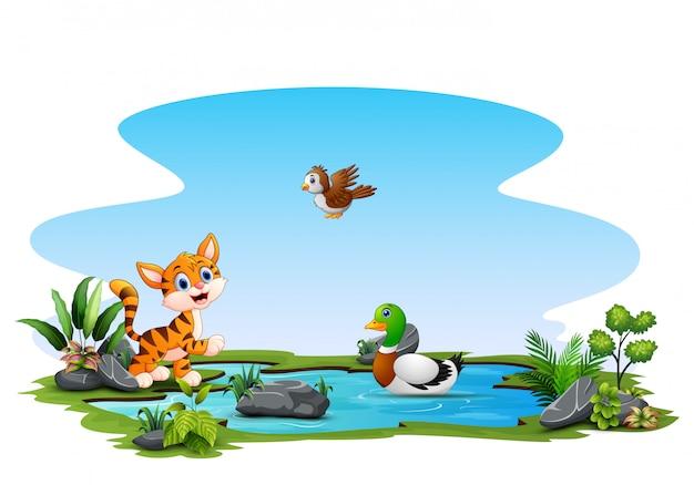 Glückliche tiere, die auf dem kleinen teich spielen