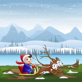Glücklicher junge, der auf einem schlitten reitet, der im winter von zwei hunden gezogen wird