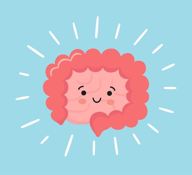 Glücklicher kawaii charakter von dünn- und dickdarm. inneres organ des menschlichen körpers des magen-darm-trakts