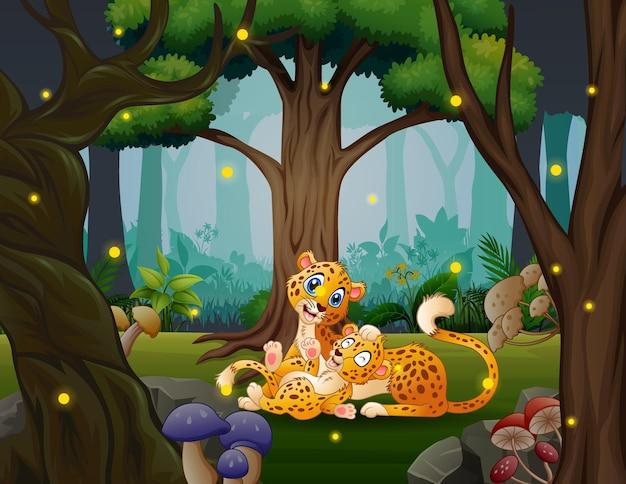 Glücklicher mutter-gepard mit ihrem jungen, der im dschungel spielt