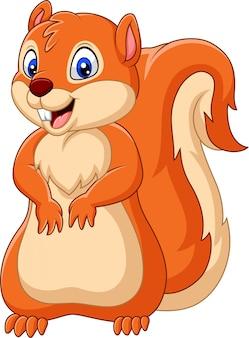 Glückliches eichhörnchen der karikatur
