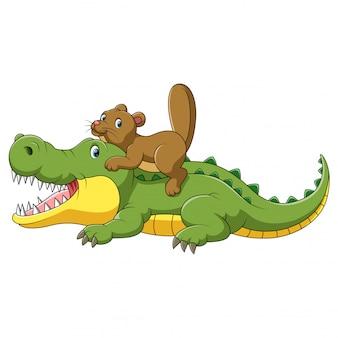 Glückliches krokodil und niedlicher biber-cartoon