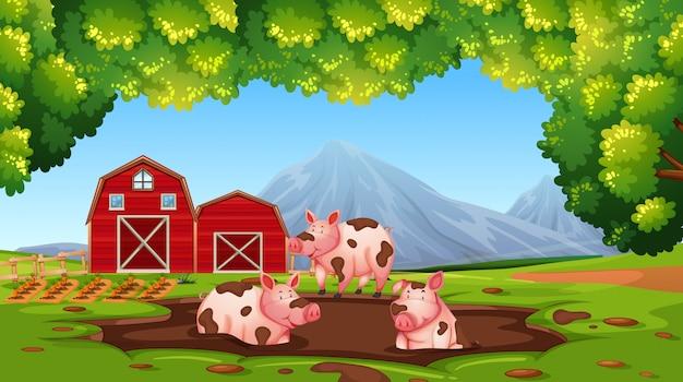 Glückliches schwein in der farm