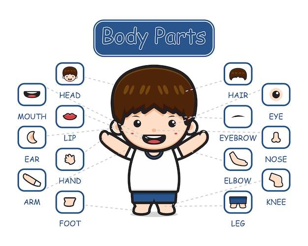 Glückliches süßes kind junge körperteil anatomie cartoon symbol clipart illustration. entwerfen sie isolierten flachen cartoon-stil