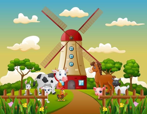 Glückliches tier mit windmühlengebäudehintergrund