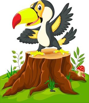 Glückliches tukan auf baumstumpf