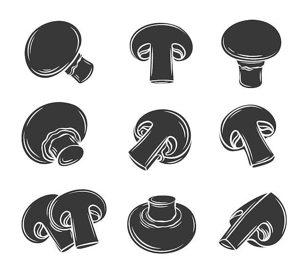 Glyph champignon pilze symbol schöne illustration