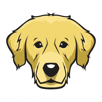 Golden retriever-kopfhund