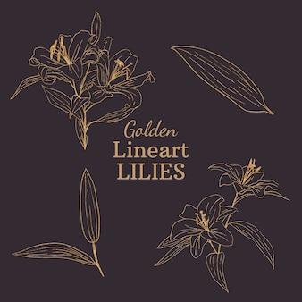 Goldene lineart-lilien