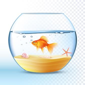 Goldener fisch im runden schüssel-plakat