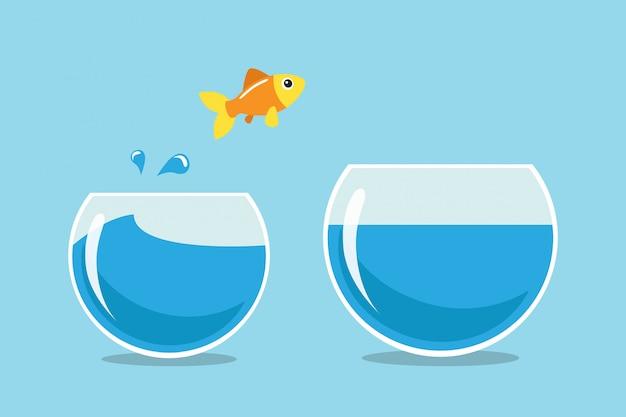 Goldener fisch springen