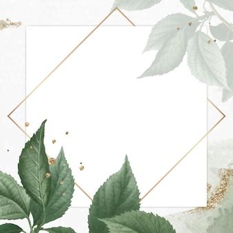 Goldrahmen auf briançon-aprikosenhintergrundvektor
