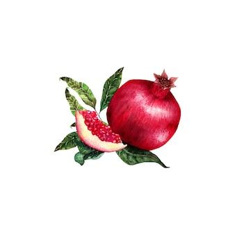 Granatapfel set isoliert aquarell.