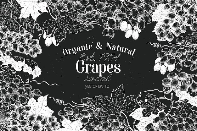 Grape berry frame-vorlage.