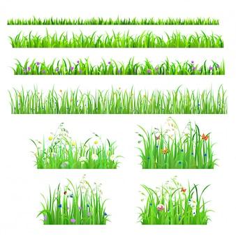 Gras der frischen blumen des frühlingssommers mit schmetterlingen