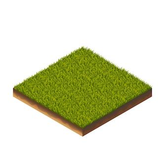 Gras isometrische illustration