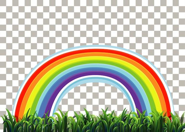Gras und regenbogen auf transparent