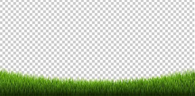 Grasränder isoliert