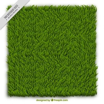 Grass hintergrund-design