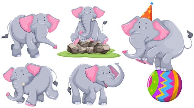 Grauer elefant in verschiedenen aktionen illustration