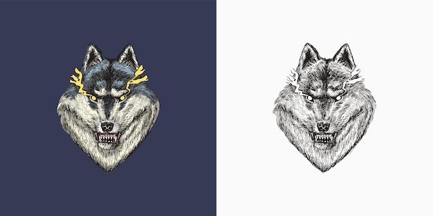 Grauer wolf ein räuberisches tier wilder waldtiervektor gravierte handgezeichnete alte vintage-skizze für