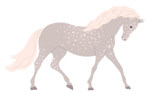 Graues helles pferd mit vielen kleinen flecken.