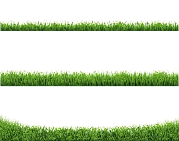 Green grass border collection und