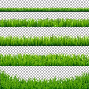 Green grass borders collection, isoliert auf transparent