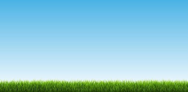 Grenze des grünen grases mit himmel