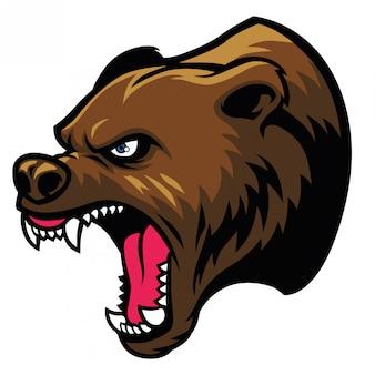 Grizzly bärenkopf