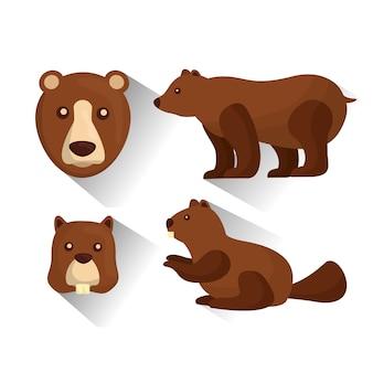 Grizzlybär und biber tiere tierwelt vektor-illustration