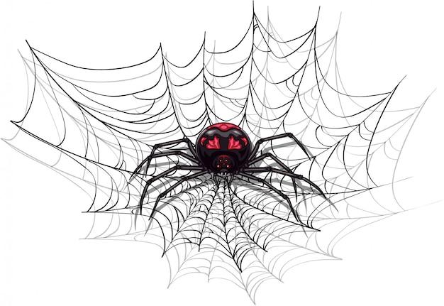 Große beängstigende spinne für halloween-design.