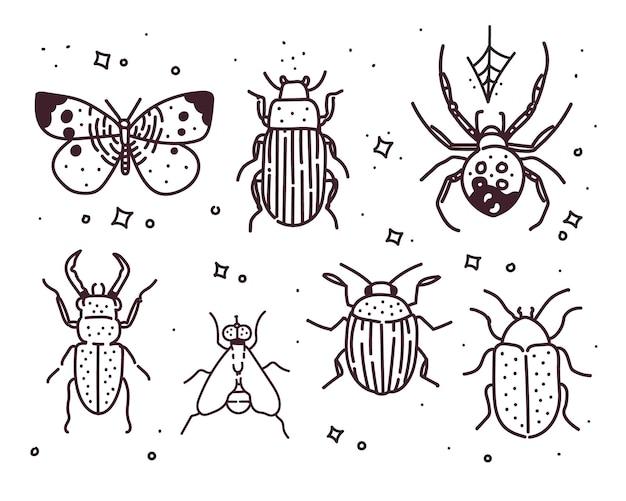 Große hand gezeichnete linie satz von insekten. insektenillustration