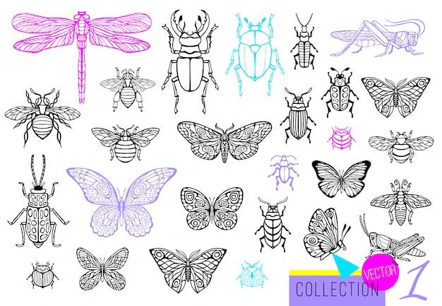 Große handgezeichnete linie satz von insektenwanzen, käfern, honigbienen, schmetterling; motte, hummel, wespe, libelle, heuschrecke. gravierte illustration der silhouette-weinlesekizzenart.