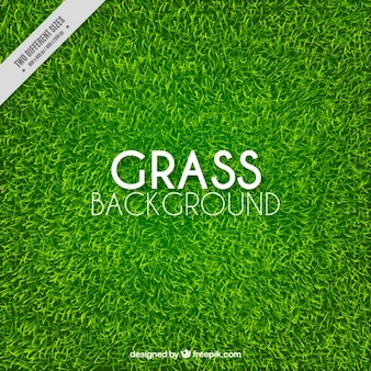 Große hintergrund der realistischen gras