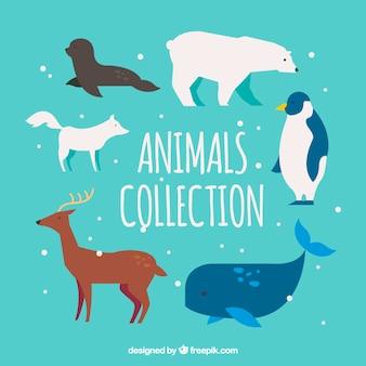 Große packung mit verschiedenen arten von tieren