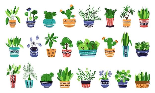 Große reihe von zu hause topfpflanzen oder blumen in töpfen