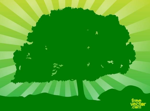 Großen grünen baum hintergrund