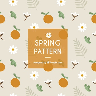 Großer frühling muster mit orangen und gänseblümchen