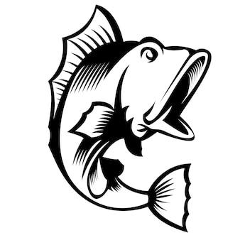 Großer mund bass fisch