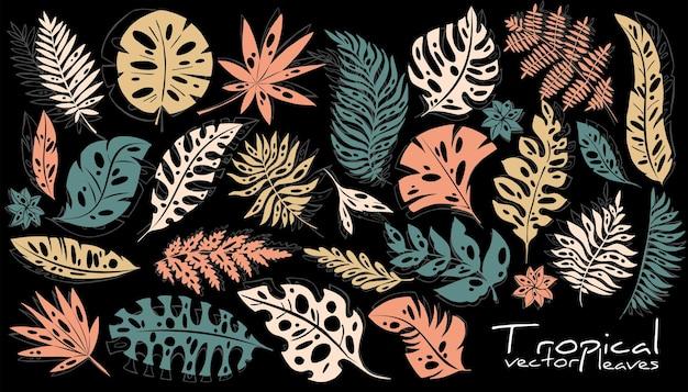Großer satz dekorativer tropischer blätter