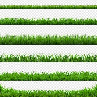 Großer satz grünes gras grenzt transparenten hintergrund, vektor-illustration
