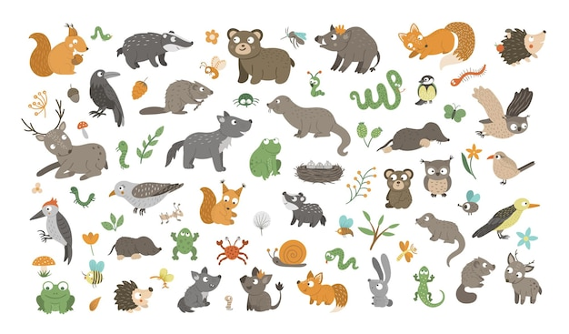 Großes set von vektor handgezeichneten flachen waldtieren, ihren babys, vögeln, insekten und waldcliparts. lustige animalische sammlung. niedliche illustration mit bär, fuchs, eichhörnchen, hirsch, igel.