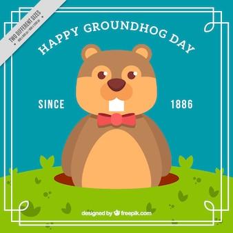 Groundhog tag seit 1886 hintergrund